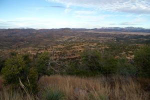 Wildcat Silver's private land as seen from a nearby hillside. (Photo by Mariana Dale)